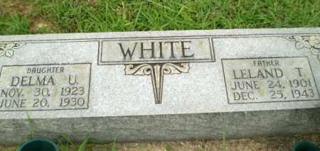 WHITE, DELMA U - Greene County, Arkansas | DELMA U WHITE - Arkansas Gravestone Photos