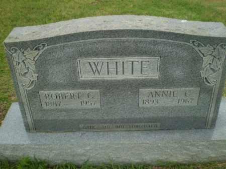 WHITE, ANNIE C - Greene County, Arkansas | ANNIE C WHITE - Arkansas Gravestone Photos