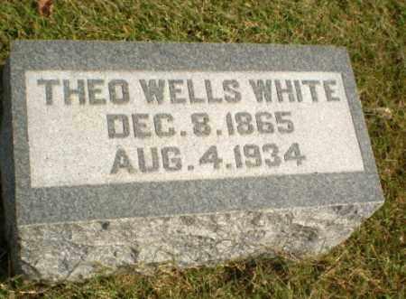 WHITE, THEO WELLS - Greene County, Arkansas | THEO WELLS WHITE - Arkansas Gravestone Photos