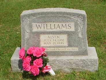 WILLIAMS, ALVIN - Greene County, Arkansas | ALVIN WILLIAMS - Arkansas Gravestone Photos
