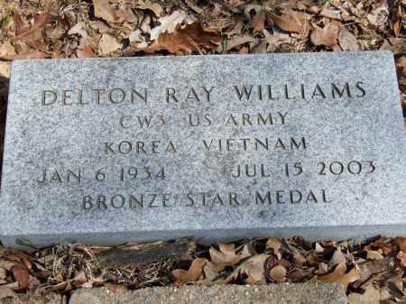 WILLIAMS, DELTON RAY - Greene County, Arkansas | DELTON RAY WILLIAMS - Arkansas Gravestone Photos
