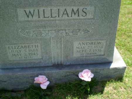 WILLIAMS, ANDREW - Greene County, Arkansas | ANDREW WILLIAMS - Arkansas Gravestone Photos