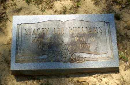 WILLIAMS, STACEY LEE - Greene County, Arkansas | STACEY LEE WILLIAMS - Arkansas Gravestone Photos