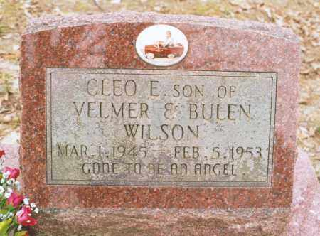 WILSON, CLEO E. - Greene County, Arkansas | CLEO E. WILSON - Arkansas Gravestone Photos