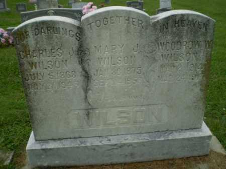 WILSON, WOODROW - Greene County, Arkansas | WOODROW WILSON - Arkansas Gravestone Photos
