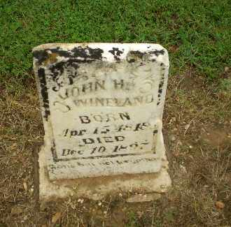 WINELAND, JOHN H - Greene County, Arkansas | JOHN H WINELAND - Arkansas Gravestone Photos