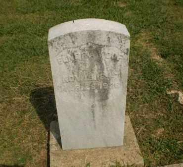 WOLF, ELNORA - Greene County, Arkansas | ELNORA WOLF - Arkansas Gravestone Photos