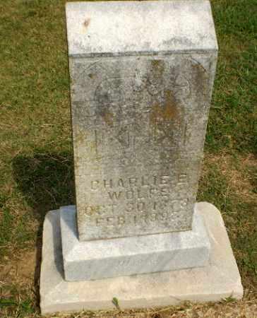 WOLFE, CHARLIE E - Greene County, Arkansas   CHARLIE E WOLFE - Arkansas Gravestone Photos
