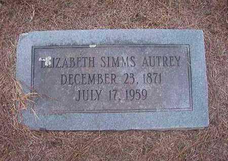 AUTREY, ELIZABETH - Hempstead County, Arkansas | ELIZABETH AUTREY - Arkansas Gravestone Photos