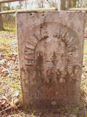 COLLINS, LAVINIA ALMIRA - Hempstead County, Arkansas | LAVINIA ALMIRA COLLINS - Arkansas Gravestone Photos