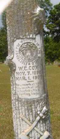 COX, W C (CLOSEUP) - Hempstead County, Arkansas | W C (CLOSEUP) COX - Arkansas Gravestone Photos