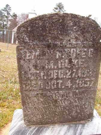 DUKE, TEMPY N - Hempstead County, Arkansas | TEMPY N DUKE - Arkansas Gravestone Photos