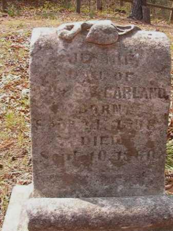GARLAND, JENNIE - Hempstead County, Arkansas   JENNIE GARLAND - Arkansas Gravestone Photos