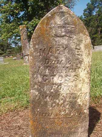 GROSS, MARY E - Hempstead County, Arkansas | MARY E GROSS - Arkansas Gravestone Photos