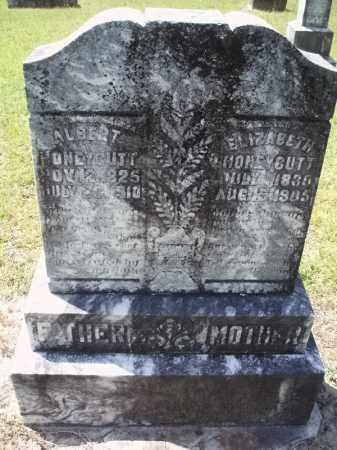 ANDERSON HONEYCUTT, ELIZABETH JANE - Hempstead County, Arkansas | ELIZABETH JANE ANDERSON HONEYCUTT - Arkansas Gravestone Photos