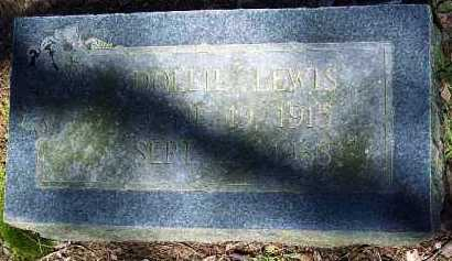 LEWIS, DOLLIE - Hempstead County, Arkansas | DOLLIE LEWIS - Arkansas Gravestone Photos