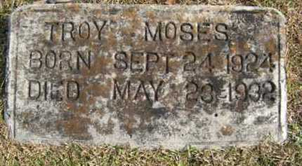 MOSES, TROY - Hempstead County, Arkansas | TROY MOSES - Arkansas Gravestone Photos