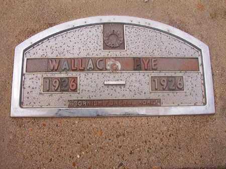 PYE, WALLACE - Hempstead County, Arkansas | WALLACE PYE - Arkansas Gravestone Photos