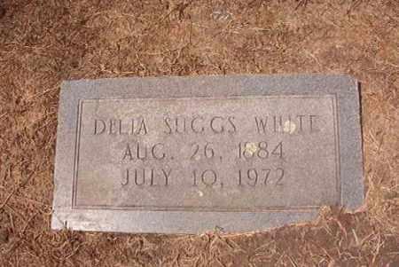 SUGGS WHITE, DELIA - Hempstead County, Arkansas | DELIA SUGGS WHITE - Arkansas Gravestone Photos