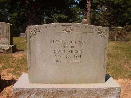 JOHNSON WILSON, ALOYIES - Hempstead County, Arkansas | ALOYIES JOHNSON WILSON - Arkansas Gravestone Photos