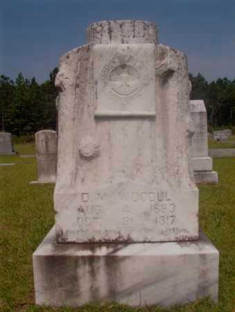 WOODUL, D M - Hempstead County, Arkansas | D M WOODUL - Arkansas Gravestone Photos