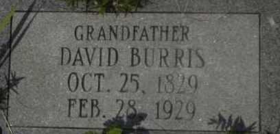 BURRIS, DAVID - Hot Spring County, Arkansas | DAVID BURRIS - Arkansas Gravestone Photos