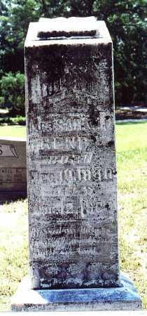 HENRY, SARAH P (WILKINSON) - Hot Spring County, Arkansas | SARAH P (WILKINSON) HENRY - Arkansas Gravestone Photos
