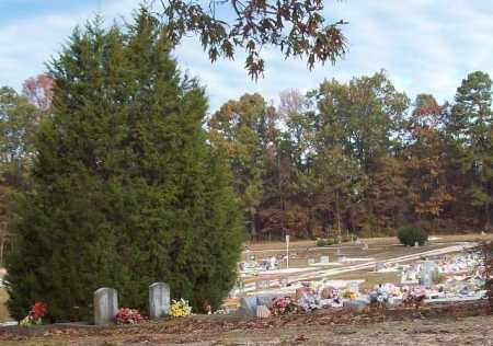 * NORTHWEST  OVERVIEW,  - Hot Spring County, Arkansas |  * NORTHWEST  OVERVIEW - Arkansas Gravestone Photos