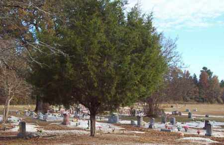 *OVERVIEW, NORTHEAST VIEW - Hot Spring County, Arkansas   NORTHEAST VIEW *OVERVIEW - Arkansas Gravestone Photos
