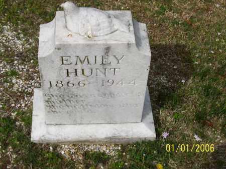 HUNT JOHNSTON, EMILY - Hot Spring County, Arkansas | EMILY HUNT JOHNSTON - Arkansas Gravestone Photos