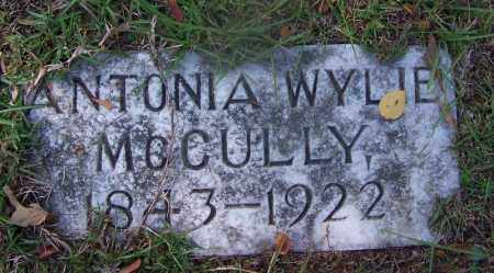 WYLIE MCCULLY, ANTONIA - Hot Spring County, Arkansas | ANTONIA WYLIE MCCULLY - Arkansas Gravestone Photos