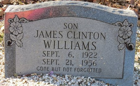 WILLIAMS, JAMES CLINTON - Hot Spring County, Arkansas | JAMES CLINTON WILLIAMS - Arkansas Gravestone Photos