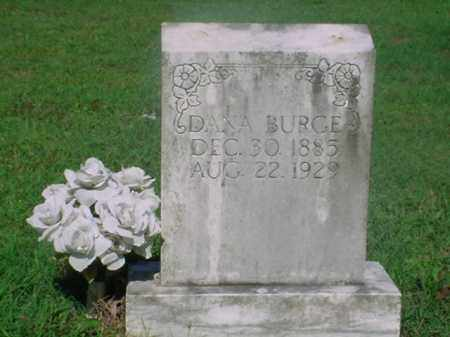 BURGE, DANA - Independence County, Arkansas | DANA BURGE - Arkansas Gravestone Photos