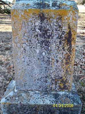 CARPENTER, SALLIE - Independence County, Arkansas | SALLIE CARPENTER - Arkansas Gravestone Photos