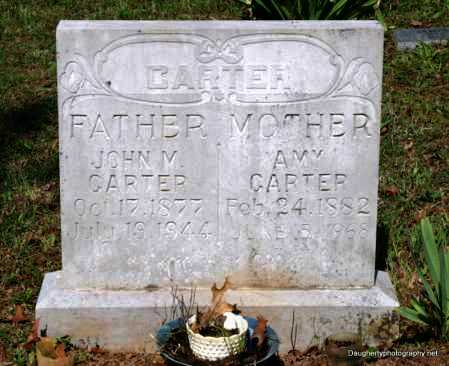 TAMSETT CARTER, AMY - Independence County, Arkansas | AMY TAMSETT CARTER - Arkansas Gravestone Photos