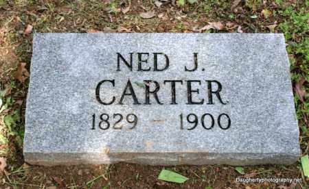 CARTER, NED - Independence County, Arkansas | NED CARTER - Arkansas Gravestone Photos