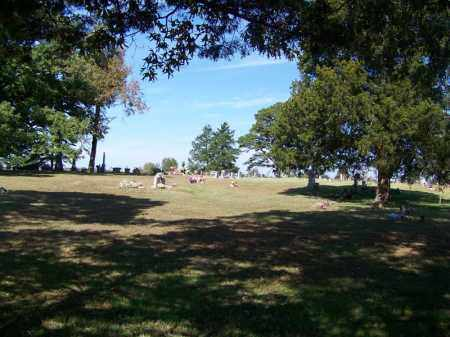 *CEDAR GROVE OVERVIEW,  - Independence County, Arkansas |  *CEDAR GROVE OVERVIEW - Arkansas Gravestone Photos