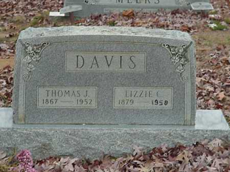 COBB DAVIS, ELIZABETH C - Independence County, Arkansas | ELIZABETH C COBB DAVIS - Arkansas Gravestone Photos