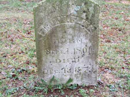 FLINN, JESSE - Independence County, Arkansas | JESSE FLINN - Arkansas Gravestone Photos