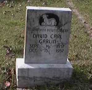 GARLIN, DAVID CARL - Independence County, Arkansas | DAVID CARL GARLIN - Arkansas Gravestone Photos