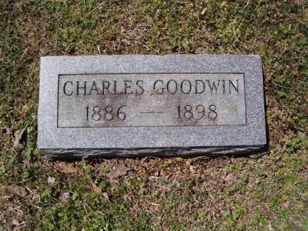 GOODWIN, CHARLES - Independence County, Arkansas | CHARLES GOODWIN - Arkansas Gravestone Photos