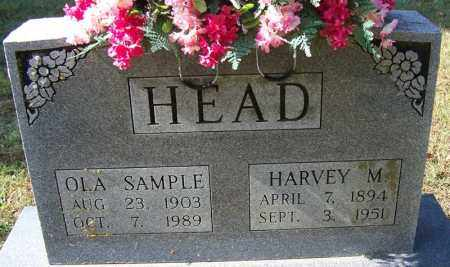 HEAD, HARVEY M - Independence County, Arkansas | HARVEY M HEAD - Arkansas Gravestone Photos