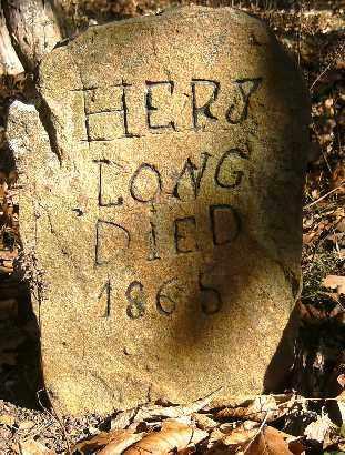 LONG, HERY - Independence County, Arkansas   HERY LONG - Arkansas Gravestone Photos