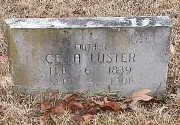 REEVES LUSTER, CELIA A - Independence County, Arkansas | CELIA A REEVES LUSTER - Arkansas Gravestone Photos