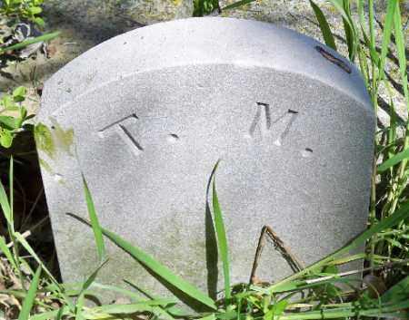 MASNER, TINT - Independence County, Arkansas | TINT MASNER - Arkansas Gravestone Photos
