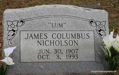 NICHOLSON, JAMES - Independence County, Arkansas | JAMES NICHOLSON - Arkansas Gravestone Photos