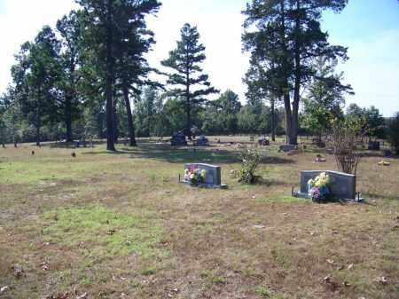 *OLD UNION OVERVIEW,  - Independence County, Arkansas |  *OLD UNION OVERVIEW - Arkansas Gravestone Photos