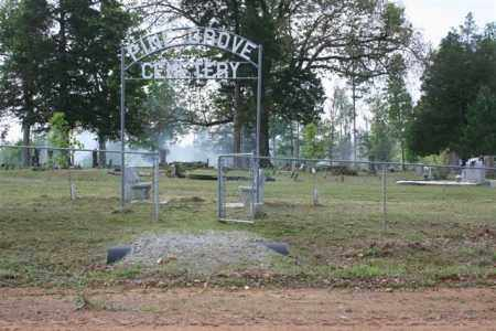 *PINE GROVE  OVERVIEW,  - Independence County, Arkansas    *PINE GROVE  OVERVIEW - Arkansas Gravestone Photos