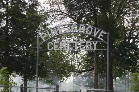 *PINE GROVE CEMETERY,  - Independence County, Arkansas |  *PINE GROVE CEMETERY - Arkansas Gravestone Photos