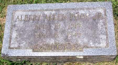 POOL, ALBERT ALLEN JR. - Independence County, Arkansas | ALBERT ALLEN JR. POOL - Arkansas Gravestone Photos